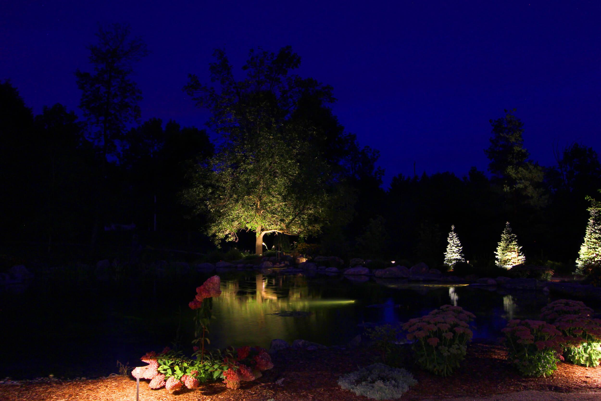 Pond lighting in Puslinch Ontario